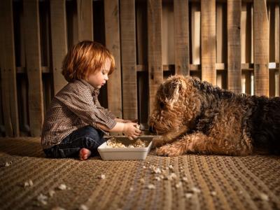 孩子,男孩,婴儿,狗,狗,动物,爆米花