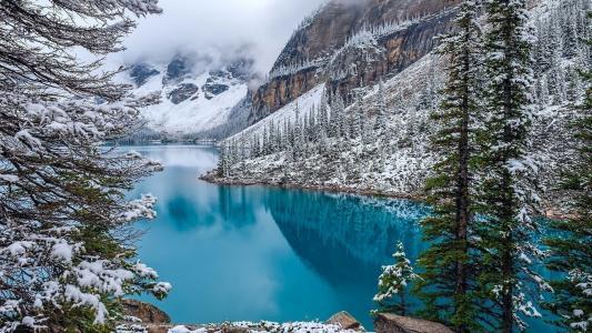 自然,冬天,美丽