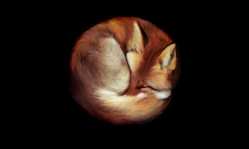 红色,狐狸,绘画,背景,奠定