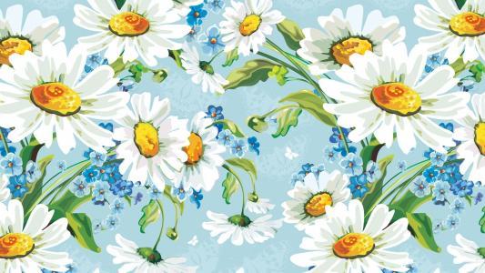 背景,绘图,鲜花,chamomiles