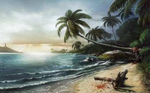 景观,海,海岸,棕榈树,死岛