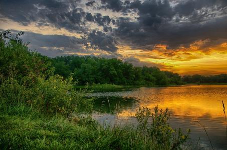 自然,夏天,湖,池塘,树,日落,云,云