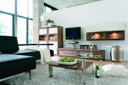 客厅,风格,房子,室内,公寓,设计