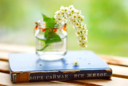 罐子,福特saimak,所有的生物,杂项,书,书