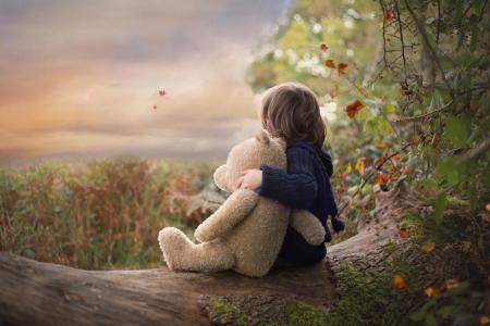 林恩,孩子,婴儿,玩具,熊,日志,性质,秋季