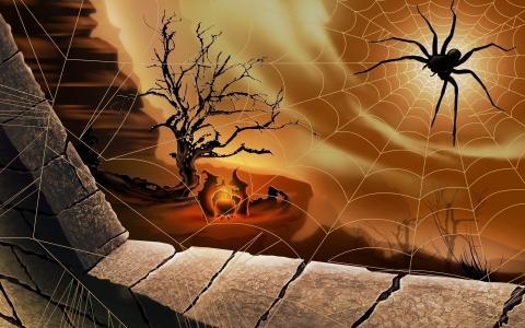 万圣节,女巫,蜘蛛