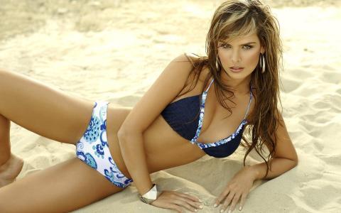 美容,沙滩,泳装,手镯