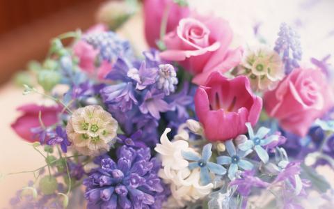 花束,鲜花,宏,玫瑰,郁金香,丁香