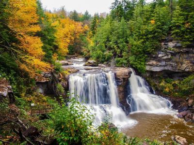 性质,秋季,树,叶子,森林,河,水,瀑布,石头