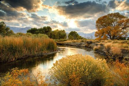 水,绿叶,天空,童话故事