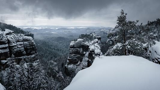 山,岩石,森林,雪,冬天