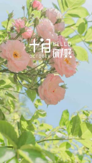 十月你好,学会坚强