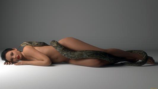3D,女孩,蟒蛇