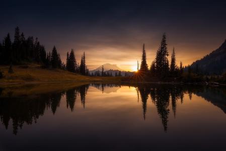 雷尼尔山,自然,美丽,湖泊,树木,日落