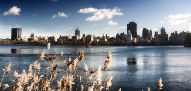 水,湖,天空,中央公园,建筑物,纽约