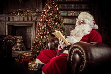 假期,新年,圣诞节,圣诞老人,房间,毛皮树,扶手椅,框,礼品,书