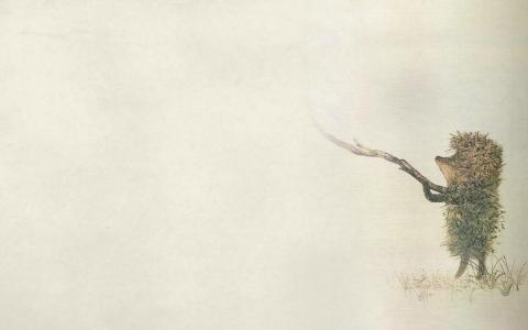 草,雾,刺猬在雾中,昏暗,坚持