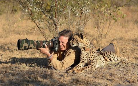 摄影师,性质,猫,相机,专业照片