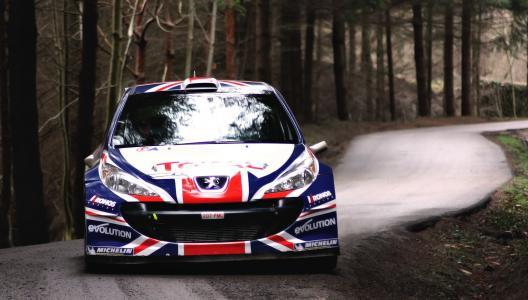 标致,WRC,集会,森林,道路,国旗,英国,英格兰