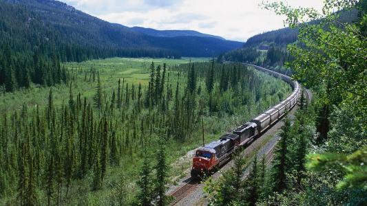 照片,性质,火车,火车,火车,组成,内燃机车,路线,景观。