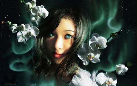 视图,兰花,光辉,女孩,幻想
