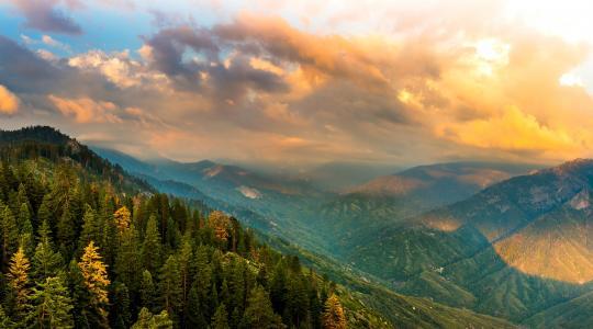 美国,公园,景观,山,森林,国王,峡谷,国家公园,加利福尼亚州,云,性质