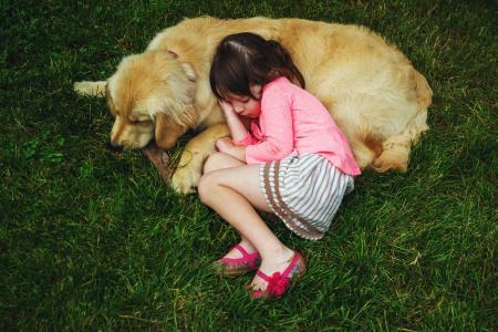 女孩,孩子,狗,照片。