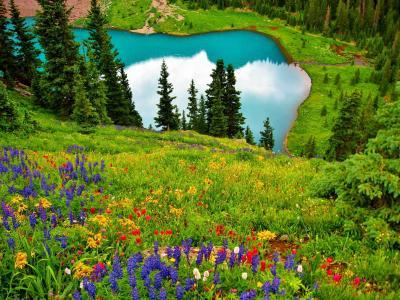 自然,山,湖,鲜花,春天