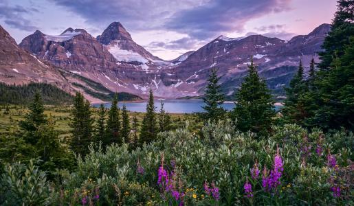 阿西尼博因山,加拿大落基山脉,加戈湖,加拿大不列颠哥伦比亚省,阿西尼博因山