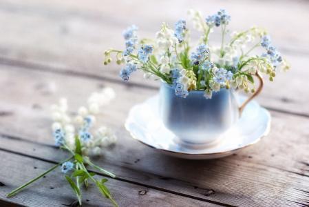 板,杯,花,勿忘我,铃兰,宏