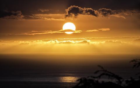 海洋,海滩,日落,日落,夏威夷