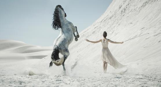 马,女孩,照片,创意,沙漠