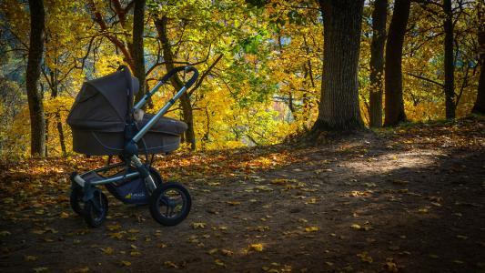 秋天,公园,叶子,婴儿小推车,路径