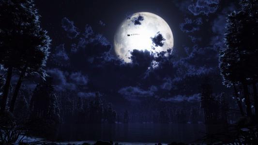 森林,圣诞老人,月亮