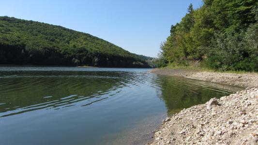 夏天,大自然,河流