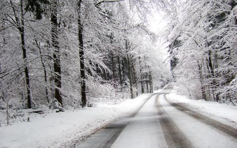 在雪路上,雪路上