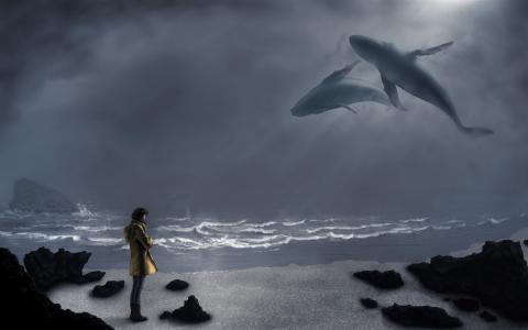 鲸鱼,女孩,海洋,天空