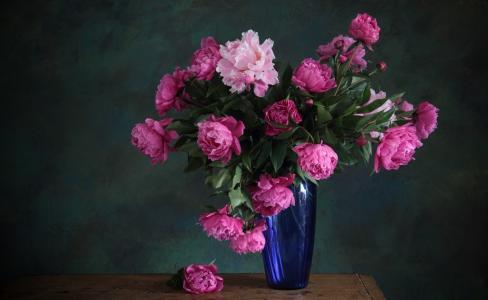 花束,蓝色,鲜花,花瓶,粉红色,牡丹
