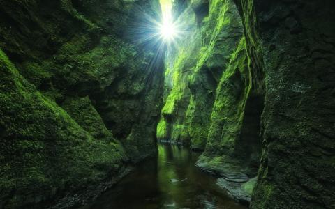 青苔,岩石,洞穴,流,光线