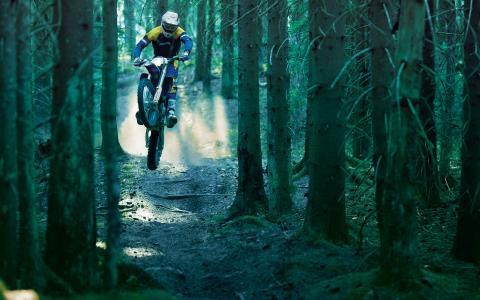 茂密的森林,步道,尘土,跳跃,摩托车手