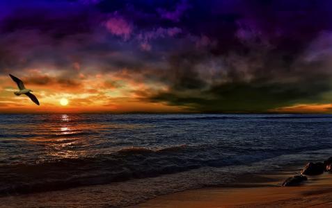 安达卢西亚,夕阳,风暴,海浪,海鸥,加工