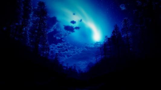 北极光,星星,天空,夜,草,水,森林