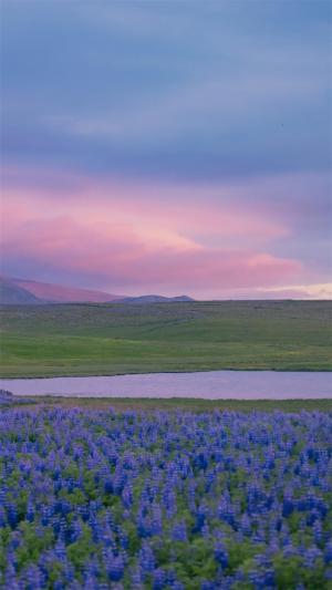 清新大草原上的唯美天空