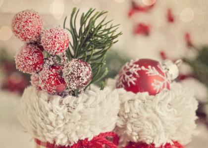 圣诞树,靴子,浆果