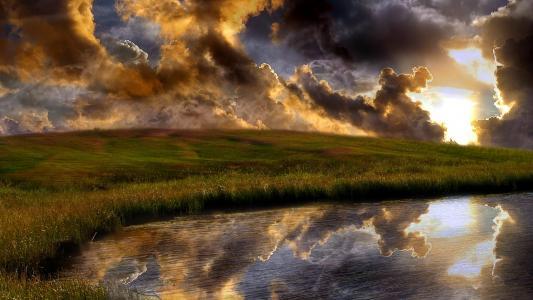 开花,乌云密布,靠湖边