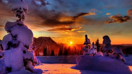 冬天,山,雪,树,阳光