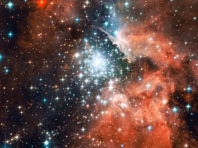 路径,新,在,乳白色,星星,出生