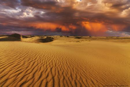 戈壁,雨,日落,蒙古,沙漠,由安东佩图斯