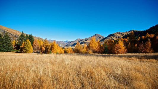 山林清爽秋季美景