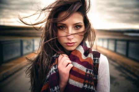 棕发,看,专业照片